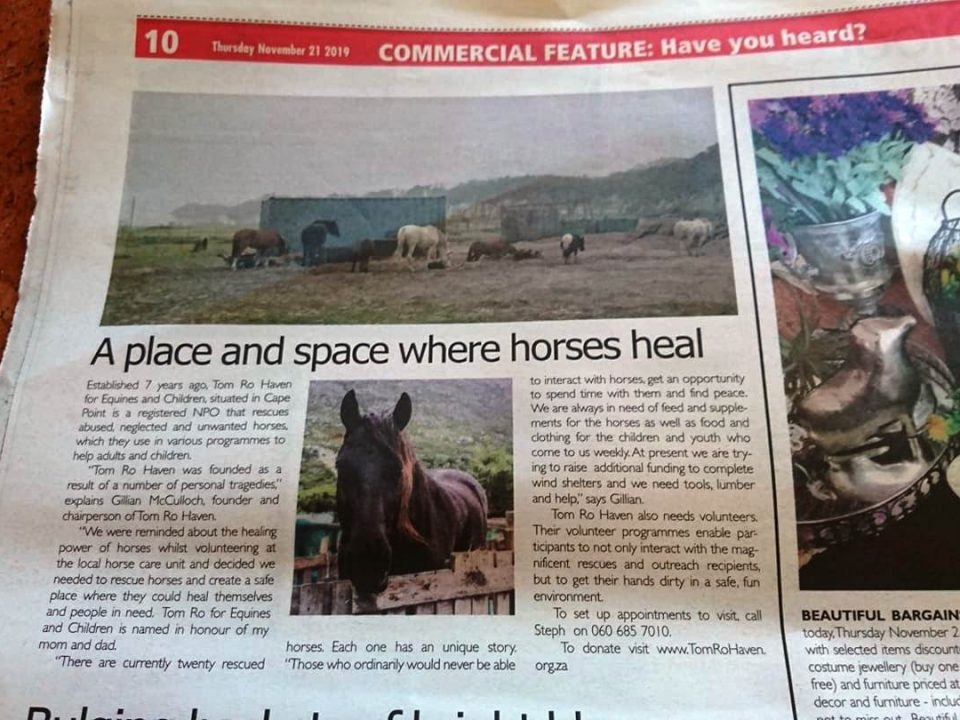 A Place And Space Where Horses Heal