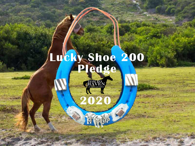 Lucky Shoes 200 Pledges and Estimated Giving